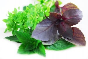 Do Dried Herbs and Spices Lose Their Nutritional Value?