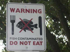 Safety of farm-raised fish